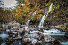 吐竜の滝の紅葉