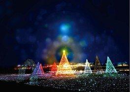 軽井沢のクリスマスを幻想的に彩る
