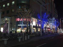 ザザシティ浜松 イルミネーション2019 画像(4/4)