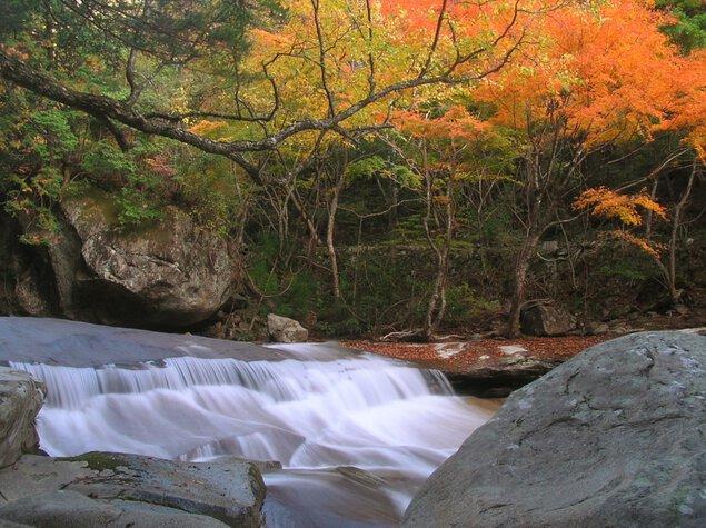 滑床渓谷・雪輪の滝の紅葉