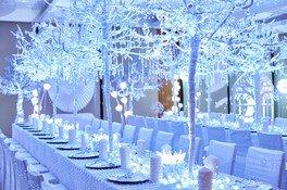 純白のツリーが神秘的な世界にいざなう