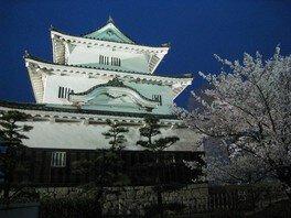 丸亀城の桜 画像(5/5)
